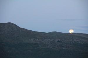 Månen på Leverkinna 10.07.14 Foto: Siri KW